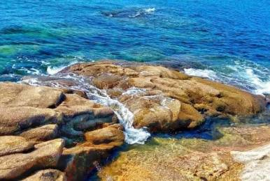 无人岛露营|荒岛求生-露营烧烤-捉螃蟹-吃海鲜-海边大轰叭