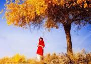 「十一•国庆节」青海湖·茶卡盐湖·鸣沙山月牙泉·莫高窟·嘉峪关长城·黑水城怪树林·额济纳胡杨林·7日游