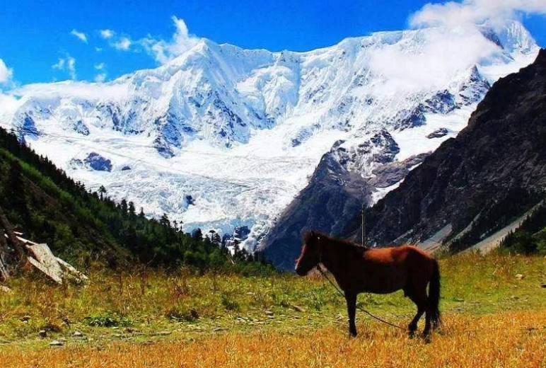 「国庆节•西藏」-林芝—米堆冰川、 巴松措、雅鲁藏布大峡谷、南迦巴瓦峰、波密、然乌湖、羊湖