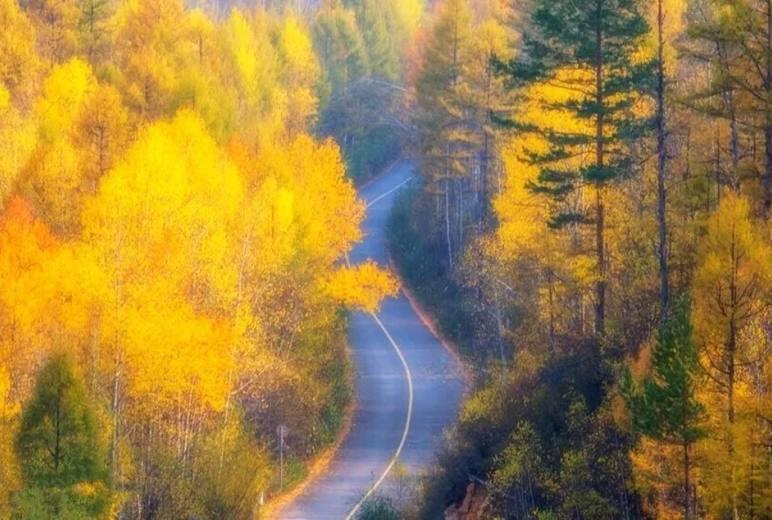 「国庆节•阿尔山」 | 童话世界阿尔山、满洲里、额尔古纳、呼伦贝尔,满足你对秋天的一切幻想