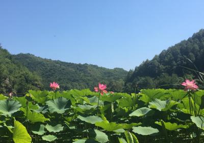 玉渡山——一年好景君须记,最是夏末秋初时