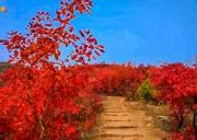 舞彩浅山赏秋|12公里国家健身步道休闲穿越-别致山景-小众原生态