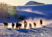 「乌兰布统」12.21~22日 | 塞北雪乡-越野驰骋-马踏飞雪-冰雪童话-摄影深度游