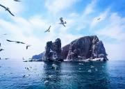 国庆3日|蓬莱•长岛|海上仙山-蓬莱-长岛-庙岛-万鸟岛-月亮湾享最美海岛浪漫假期